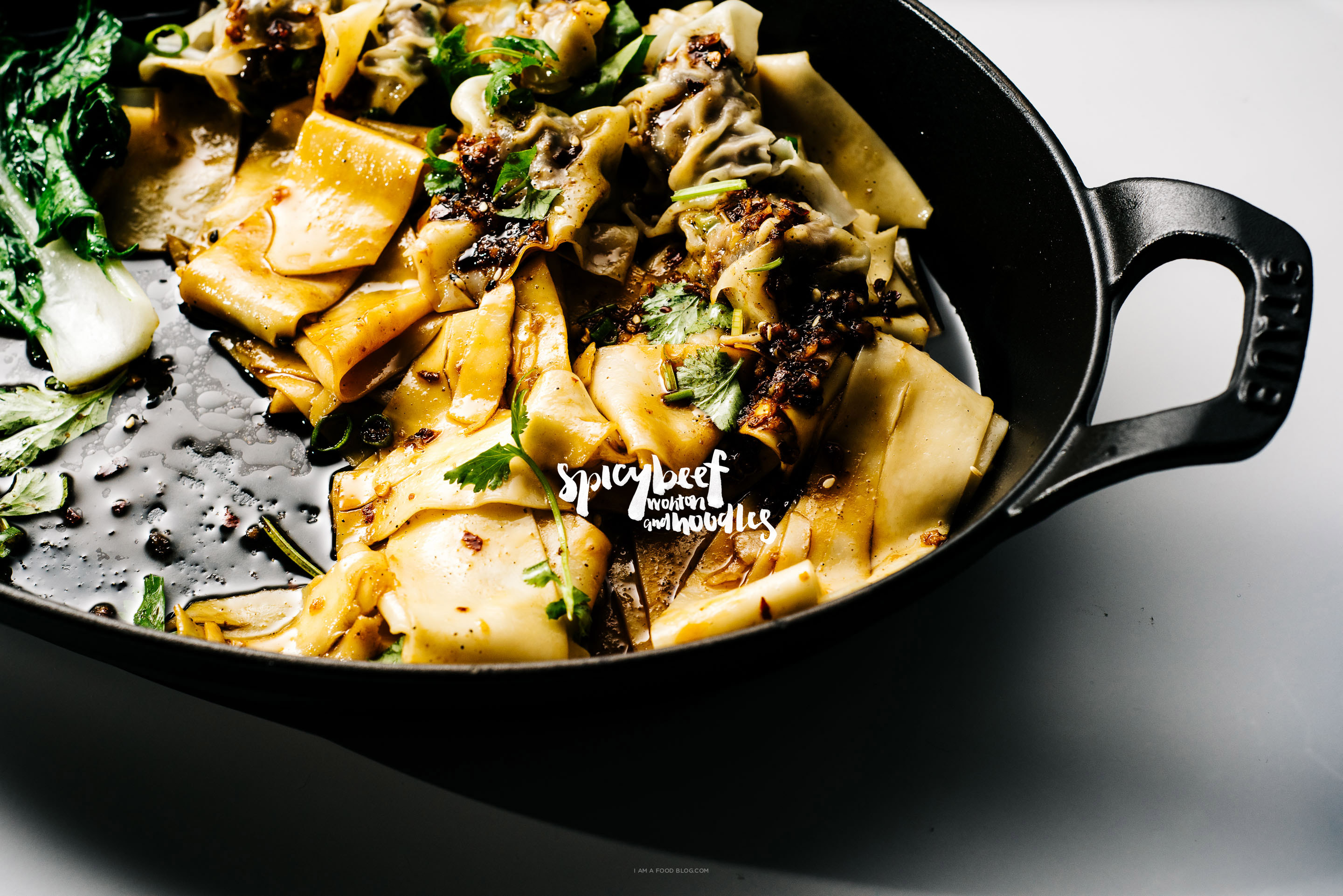 spicy wonton and noodles recipe - www.iamafoodblog.com