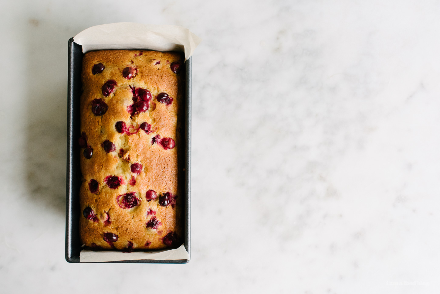 cranberry lemon loaf recipe - www.iamafoodblog.com