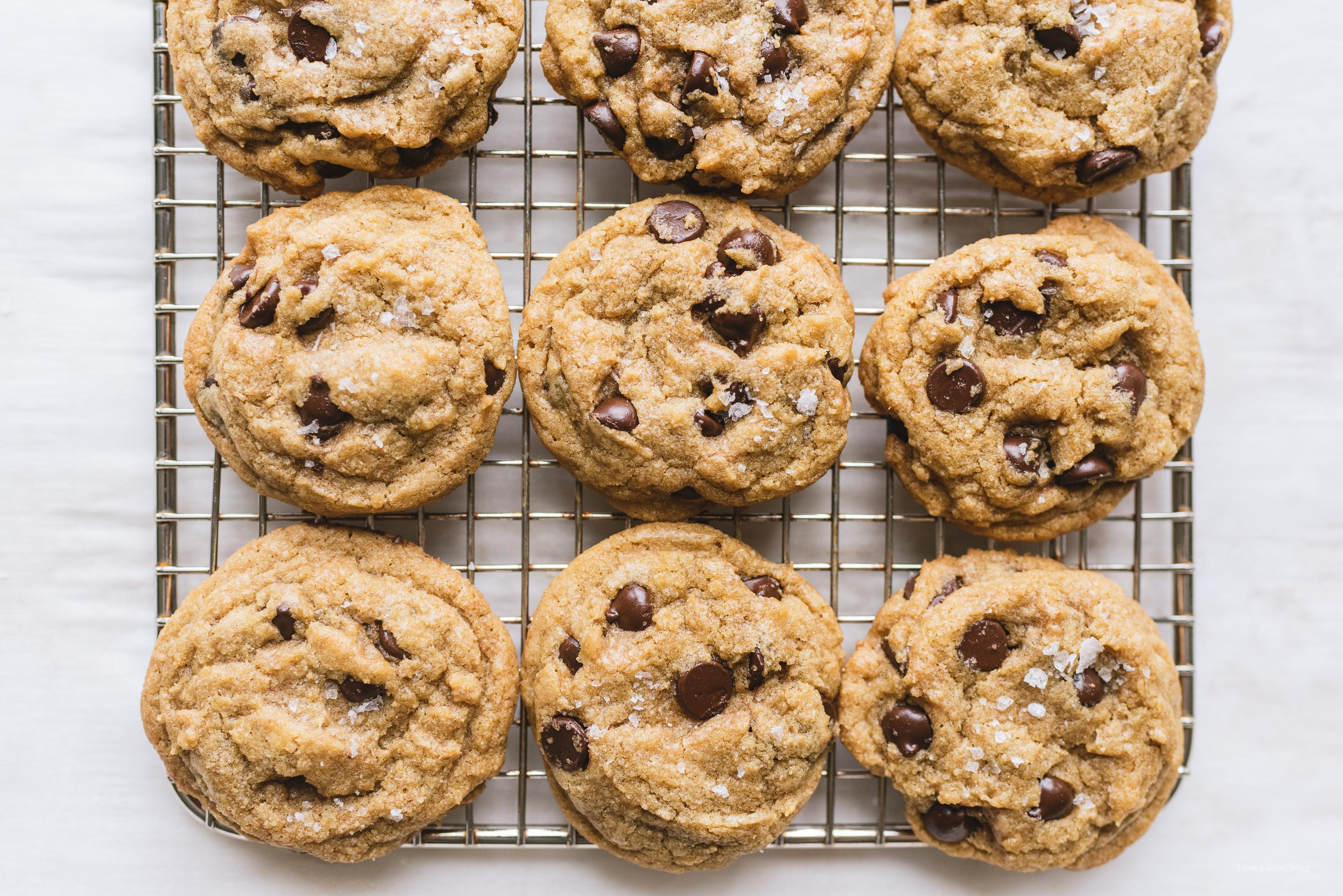 Chocolate Chip Cookie Recipe Melted Butter