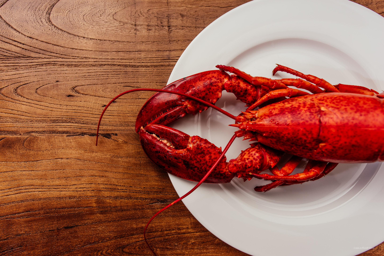 Creamy Lobster Pasta | www.iamafoodblog.com