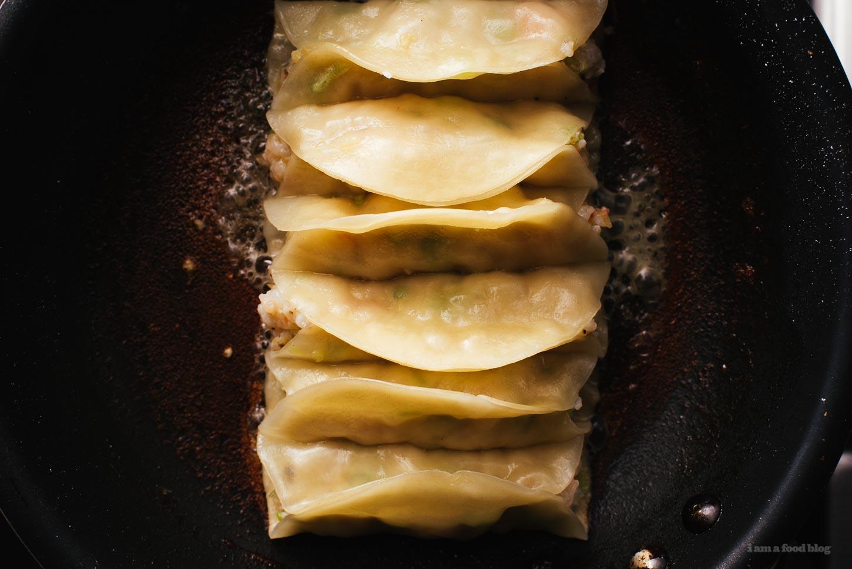 Crispy Pan-Fried Shrimp Potstickers Recipe - www.iamafoodblog.com