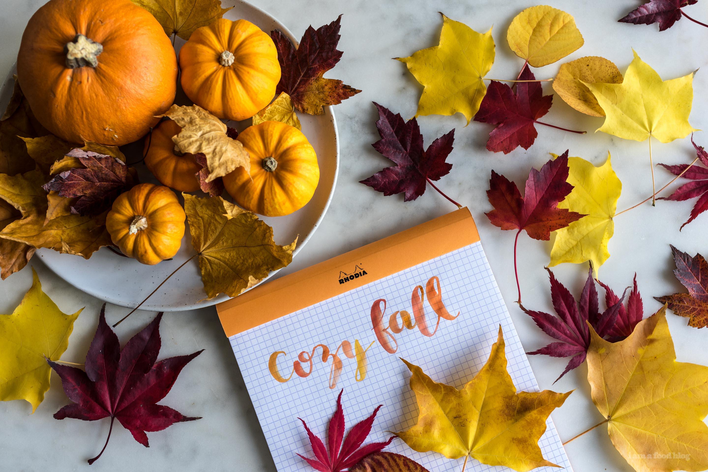 cozy fall - www.iamafoodblog.com