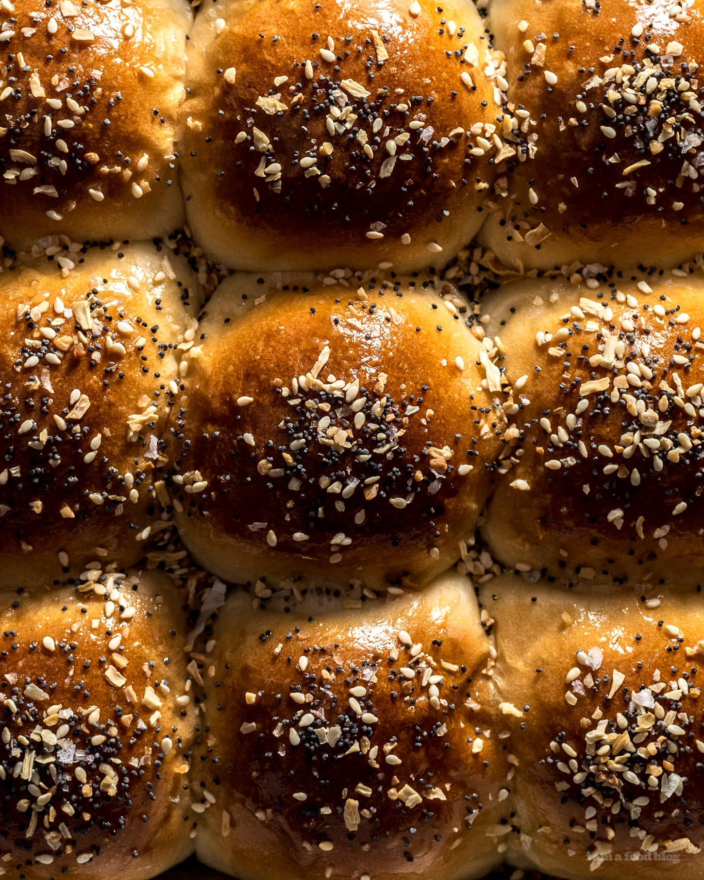 Everything Bagel Dinner Rolls | www.iamafoodblog.com