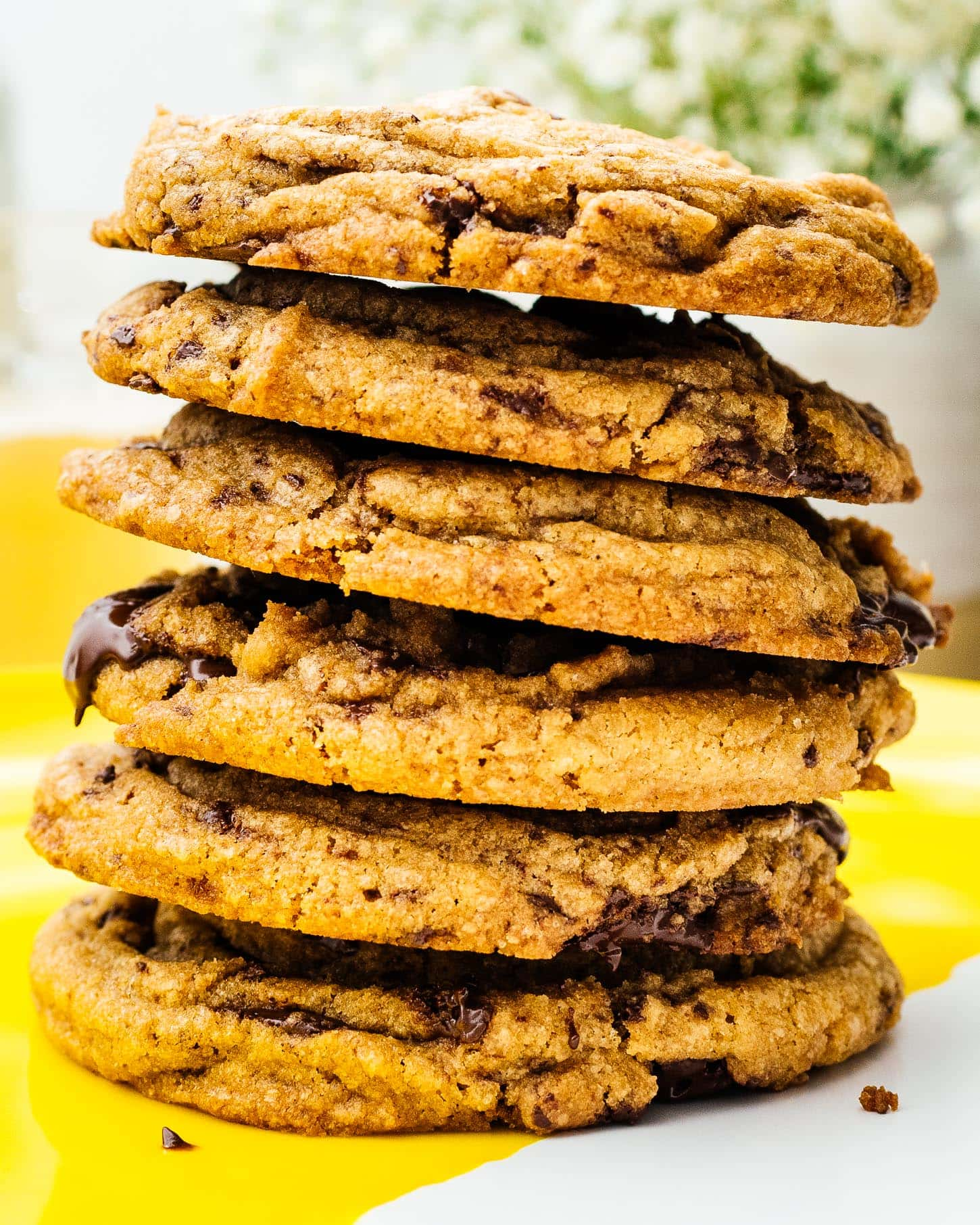 the best chocolate chip cookies   www.iamafoodblog.com