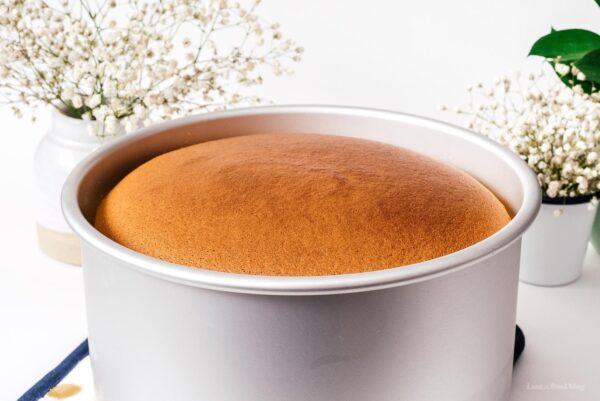 cheesecake cooling | www.iamafoodblog.com