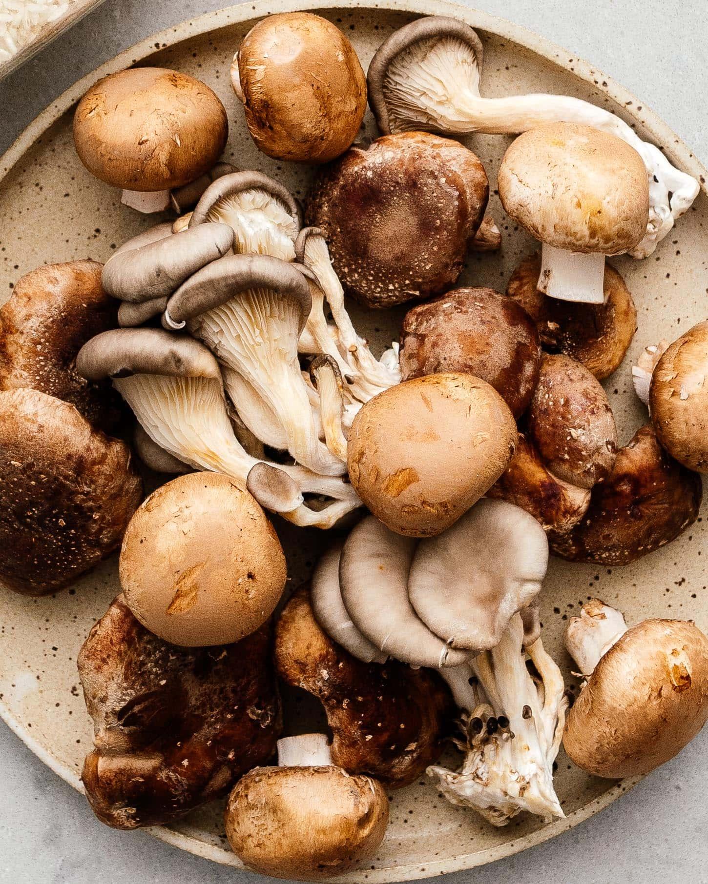 mushroom medley | www.iamafoodblog.com