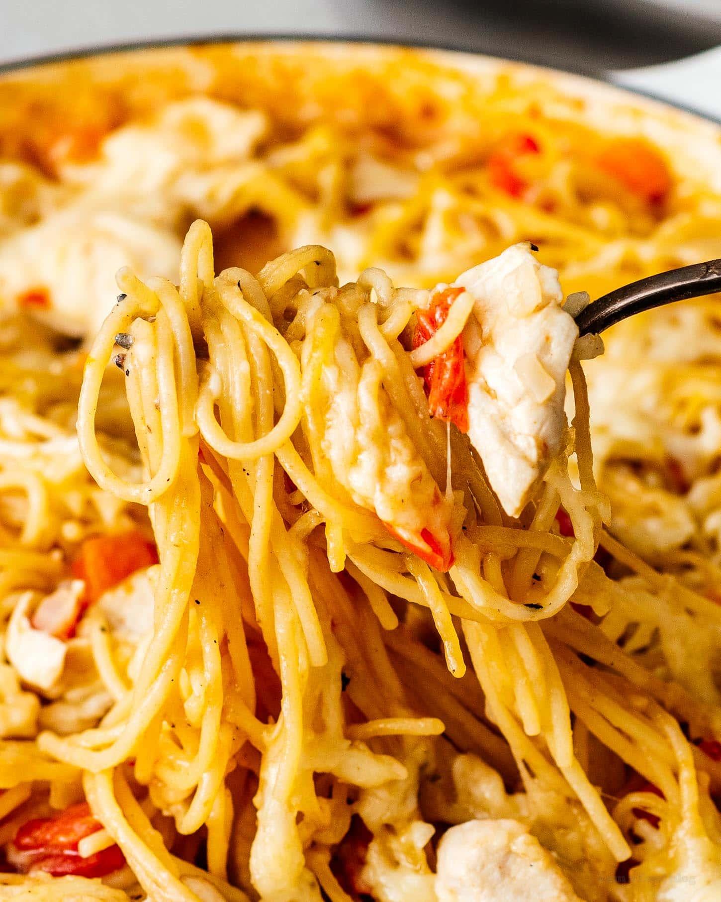 鸡肉意大利面食谱| www.www.cqsaimeng.com伟德国际娱乐红利
